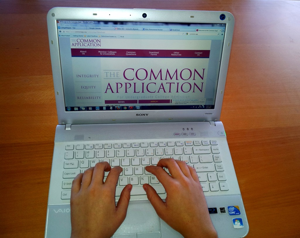 Common app essay questions 2013
